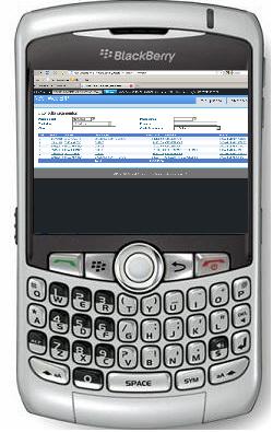 NeXT Web ERP Blackberry