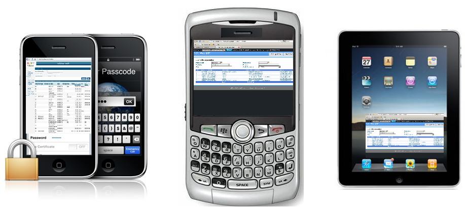NeXT Web ERP - Integre o NeXT ERP com o módulo web adicional para vendas externas e consulta de informações online